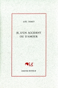 LoicDemey-jeaccidentamour-librairieparenthesestrasbourg